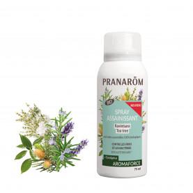 Atmosphere purifying spray - Ravintsara / Tea Tree (+ Eucalyptus) | Inula