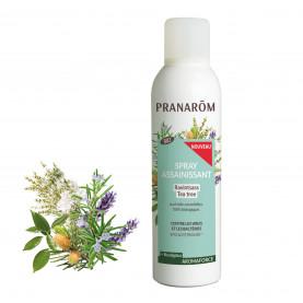 Atmosphere purifying spray - Ravintsara / Tea-tree (+ Eucalyptus) | Inula