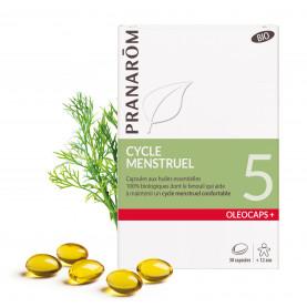 5 - Menstrual cycle | Inula