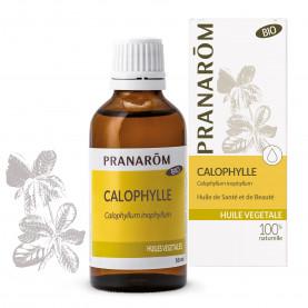 Calophylle | Inula