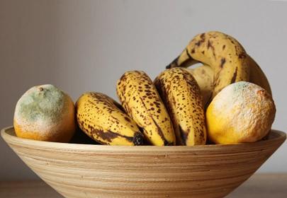 Effect of Essential Oils on the in vitro growth of Penicillium digitatum and Penicillium italicum infecting citrus and Colletotrichum musea infecting banana